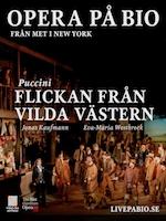 FLICKAN FRAN VILDA VASTERN